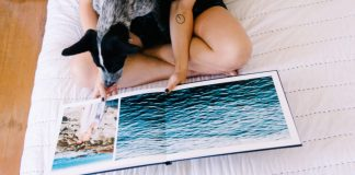 A person sits on a bed looking through a photo book while holding a black and white dog on their lap