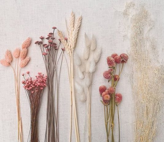 Trends We Loved - Dried Flowers