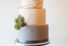 Simple Clean White -Tier Wedding Cake with Succulents